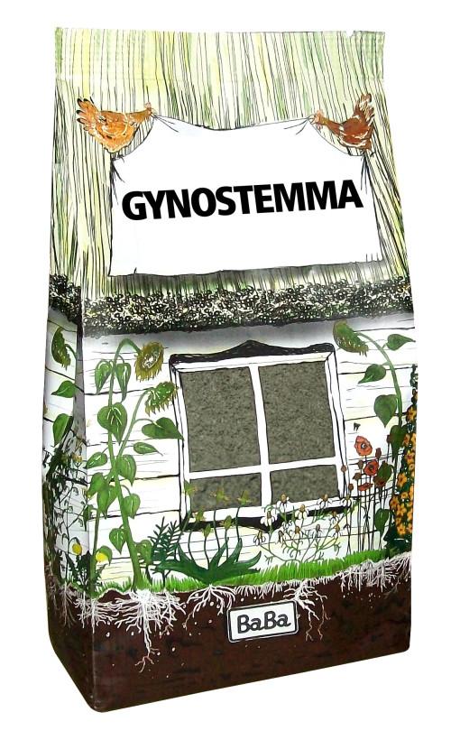 GYNOSTEMMA